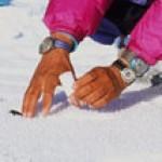11_Groenland_échantillons-devant-la-tente